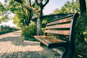 new-garden-benches